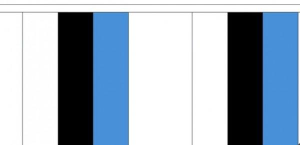 Vlaggenlijn Estland Estlandse  vlaggenlijn van 3m stoklengte 30cm