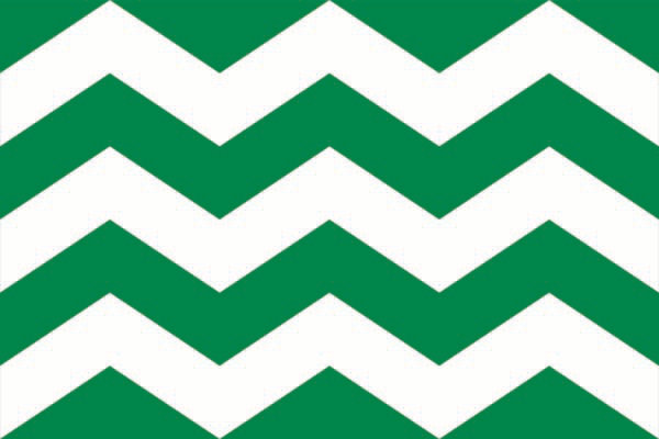 Vlag Westland 150x225cm Westlandse vlaggen