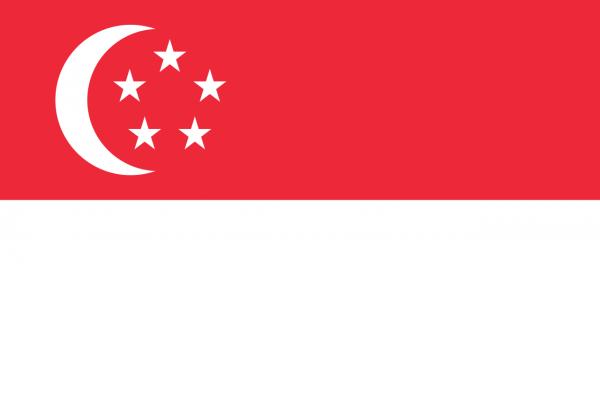 Vlag Singapore 100x150cm Glanspoly