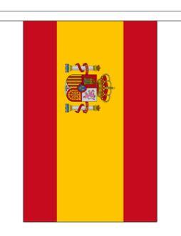 Vlaggenlijn Spanje met wapen stof 9m