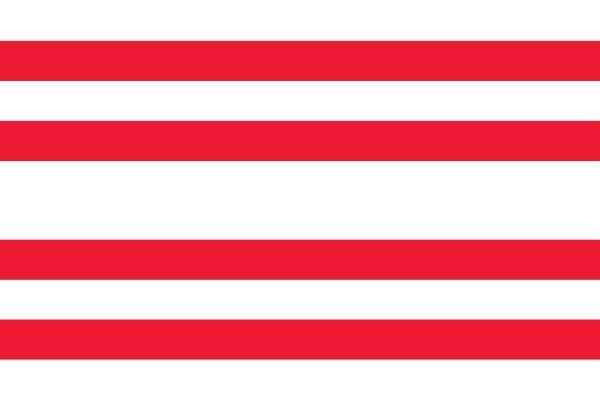Vlag gemeente Gorinchem 70x100cm Gorinchemmer bootvlag