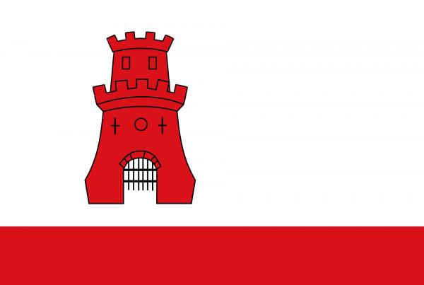 Vlaggetje Rijnsburg 20x30cm