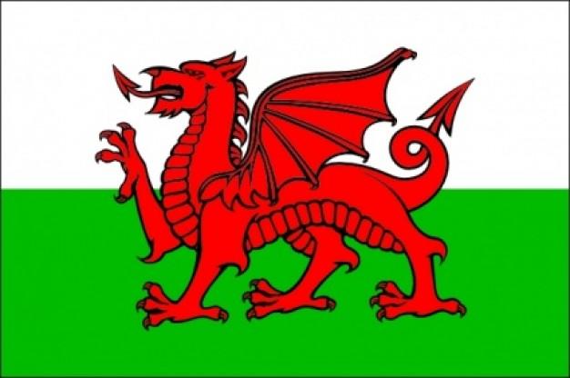 vlag Wales 20x30cm