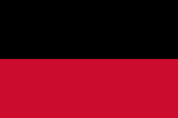Grote vlag Nijmegen
