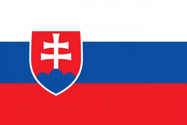 Vlag Slowakije 100x150cm Glanspoly