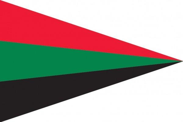puntvlag gemeente Aalsmeer 30x45cm bootvlag