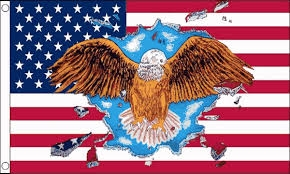 Eagle USA 90x150cm Amerikaanse vlag