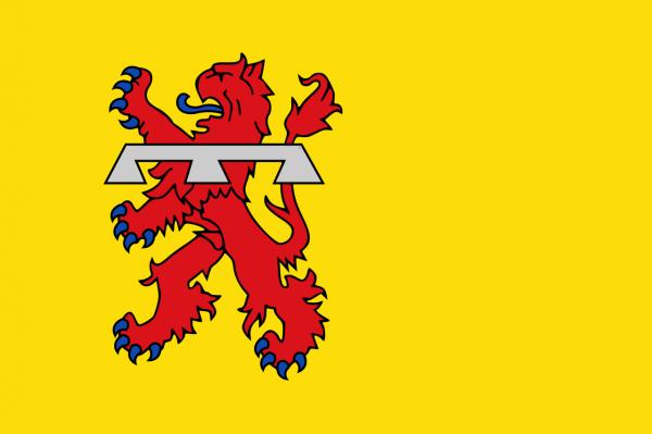 Grote vlag Teylingen