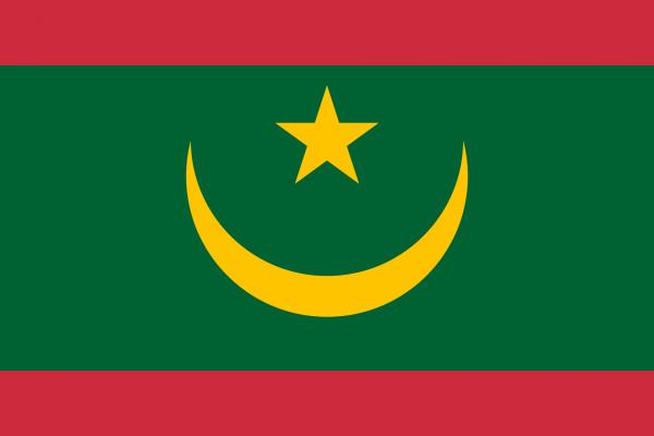 Vlag Mauritanie 100x150cm Glanspoly