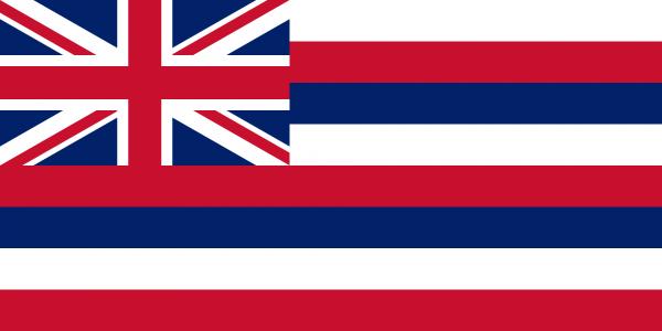 Vlag Hawai 100x150cm Glanspoly
