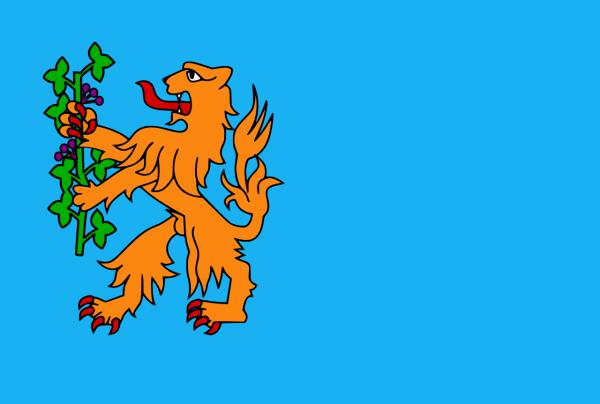 Grote vlag Brummen