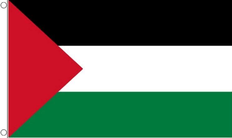 Vlag Palestina   Palestijnse vlaggen 90x150 cm Best Value