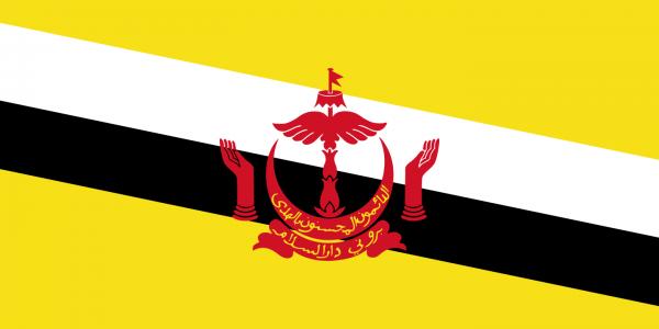 vlag Brunei | Bruneise vlaggen 150x225cm mast vlag