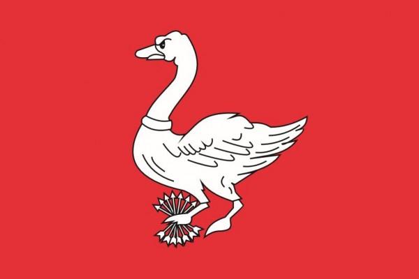 Vlag Landsmeer 20x30cm