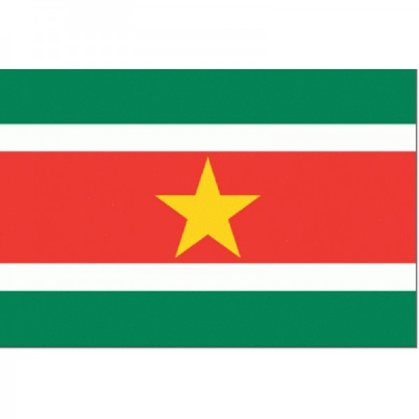 vlag Suriname 30x45cm Gastenvlag