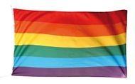 Regenboogvlag Vredesvlag XXL 150x2225 Topkwaliteit mastvlag Regenboog