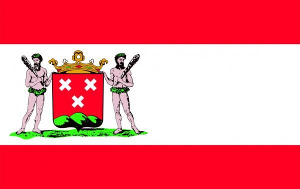 Vlag Bergen op Zoom 30x45cm gemeente vlaggen
