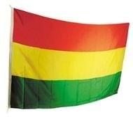 Vlag Carnaval Limburg 150x225cm