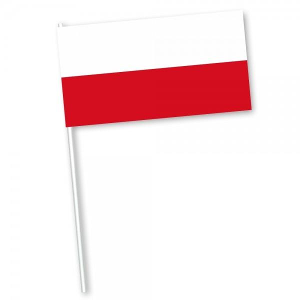 Poolse zwaaivlag met vlag Polen