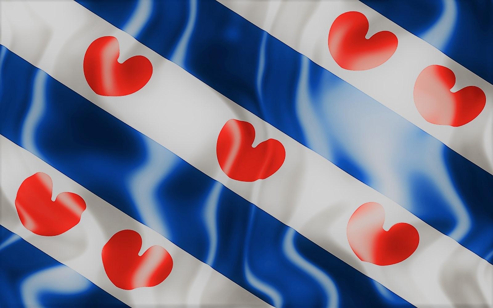 vlag 100x150cm Friesland - effect