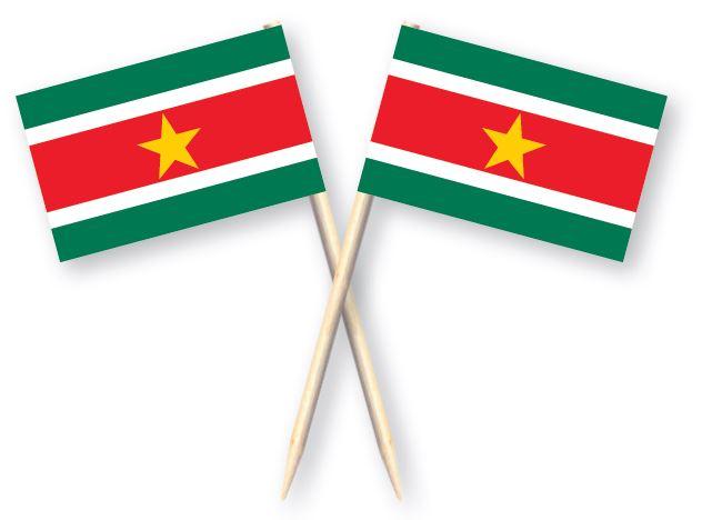 Cocktailprikkers vlag Suriname, Surinaamse Kaasprikkers, 50 stuks
