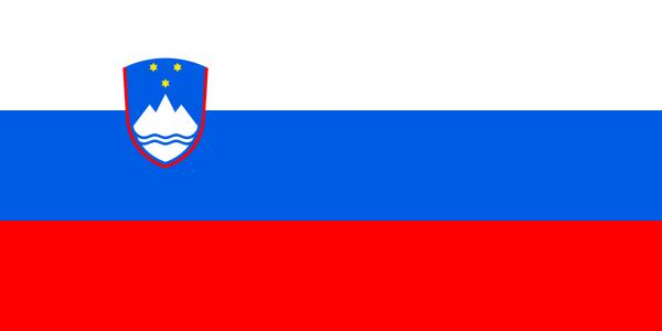 Vlag Slovenie 100x150cm Glanspoly