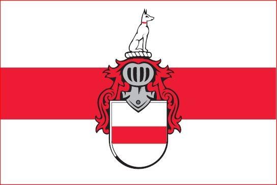 Vlag Doornenburg 50x75cm Doornenburgse vlaggen kopen
