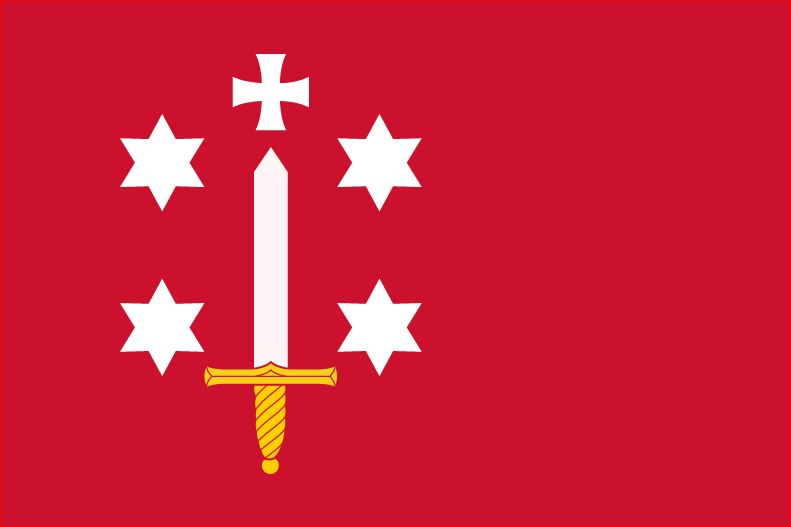 Vlag Haarlem 20x30cm