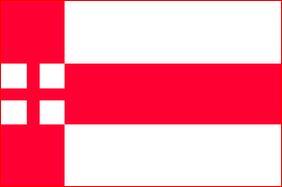 Vlag gemeente Amersfoort 20x30cm amersfoortse vlaggen kopen