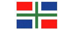 Groninger vlaggetje 10x15cm kleine vlag Groningen