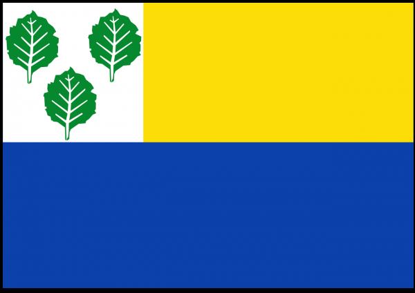 Vlaggetje Oldebroek