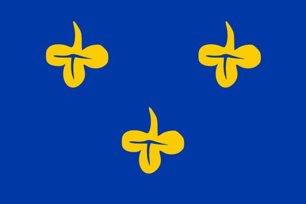 Grote vlag Zoeterwoude