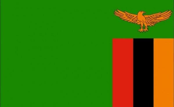 Vlag Zambia Zambiaanse vlaggen 30x45cm