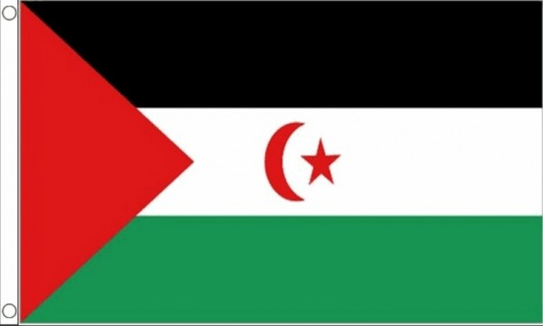 Vlag Westelijke Sahara 60x90cm