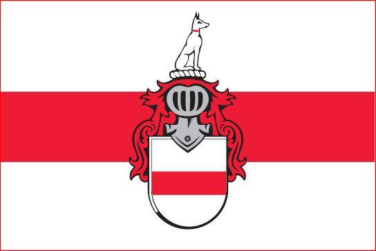 Vlag Doornenburg 20x30cm Doornenburgse vlaggen kopen