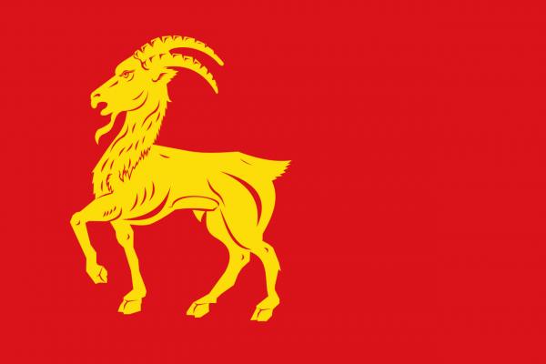 Grote vlag Boxmeer