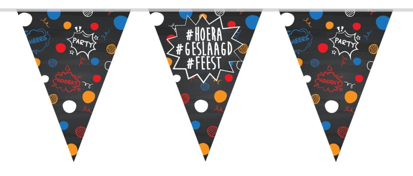 Vlaggenlijn #hoera #geslaagd #feest 10m