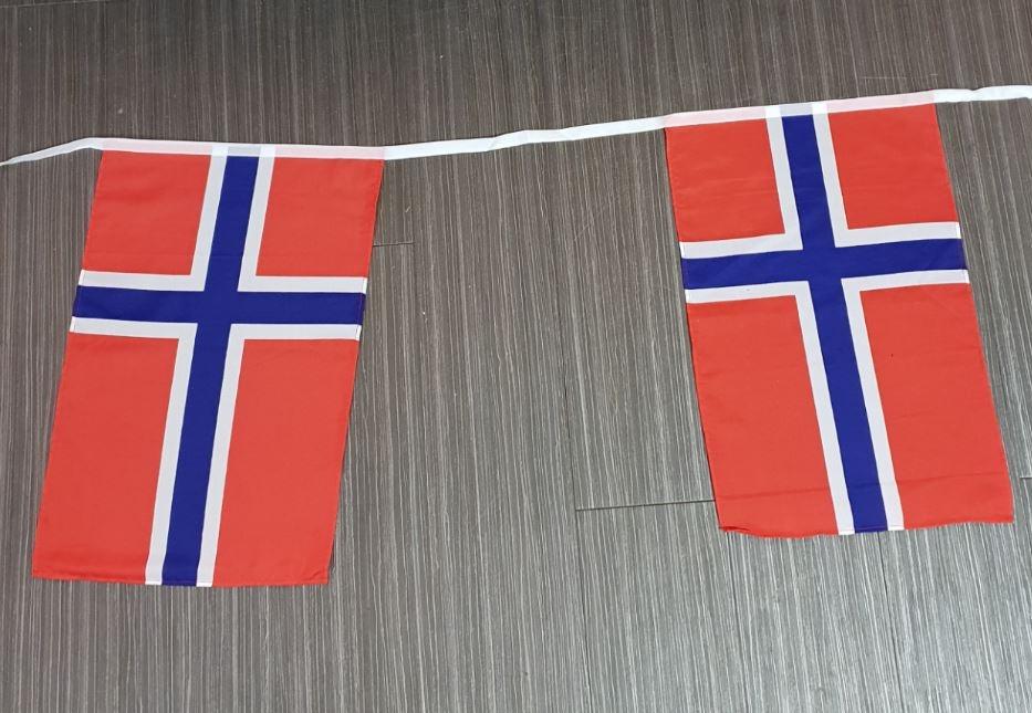 Vlaggenlijn Noorwegen 10m XL