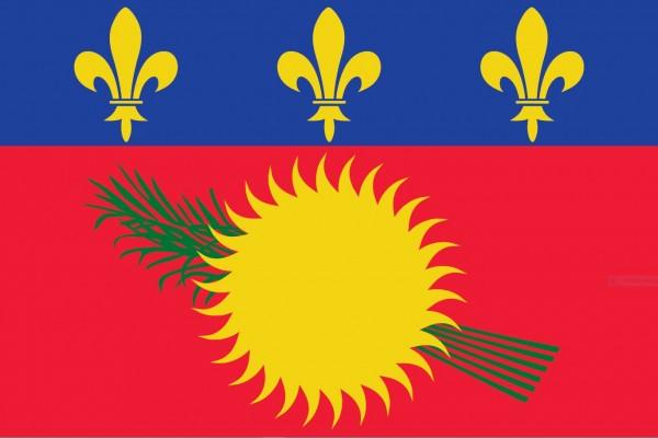 Vlag Guadeloupe 30x45cm