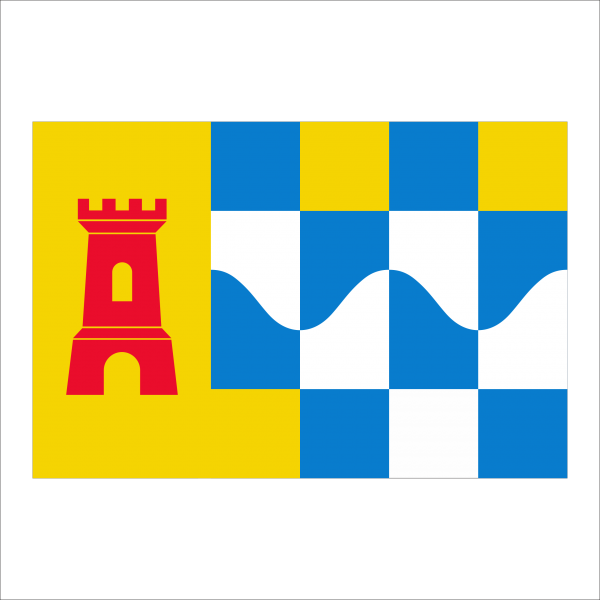 vlag Overbetuwe 50x75cm