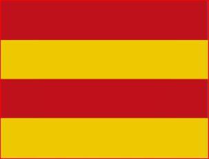 Vlag gemeente Staveren | Stavoren vlaggen 20x30cm