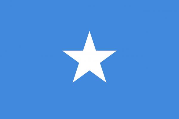 Tafelvlag Somalie met standaard