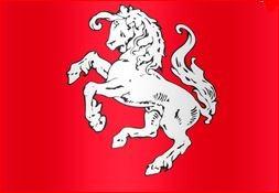 Officiële Twentse Ros vlag 50x75cm