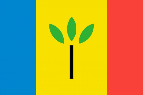 Grote vlag Landgraaf
