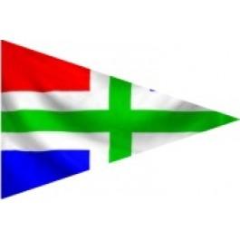 Groningse puntvlag 20x30cm Groninger puntvlaggetje wimpeltje