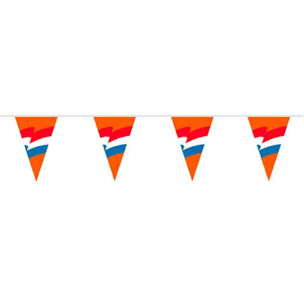 Vlaggenlijn Oranje met Nederlandse vlag 6m