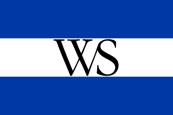 Grote vlag Weesp