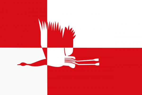 Grote vlag Cranendonck