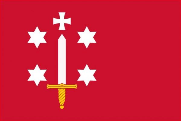 Vlag Haarlem Haarlemse vlaggen 150x225cm kopen
