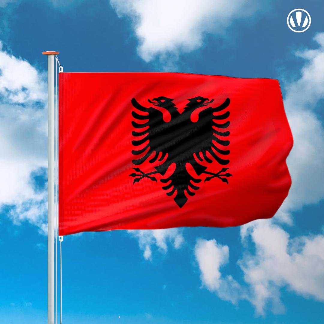 Chat albanische A Waffen